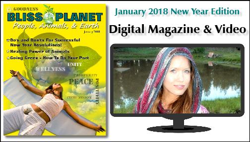 New Year Magazine 2018